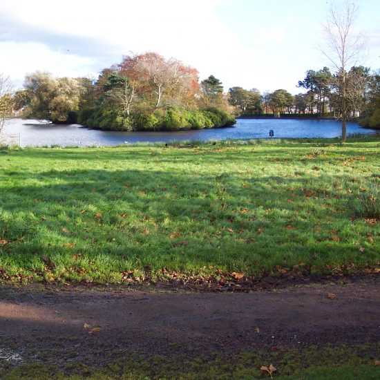 Beveridge Park Wetland before work began by Water Gems in 2006