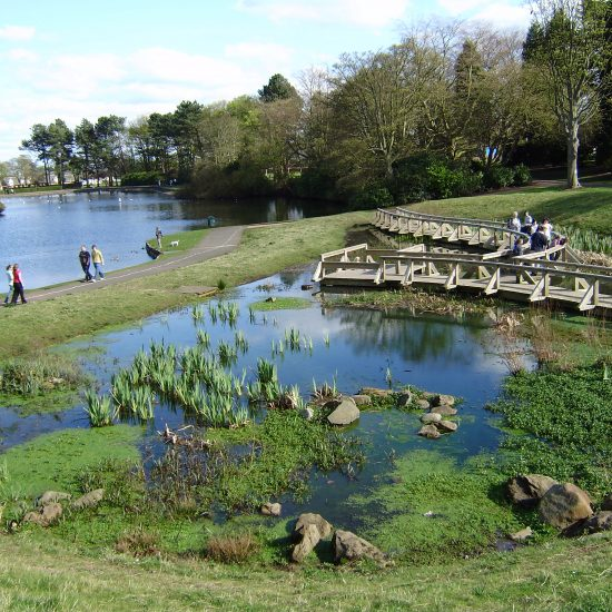 Wetland at Beveridge Park Fife by Water Gems complete, and area open to the public