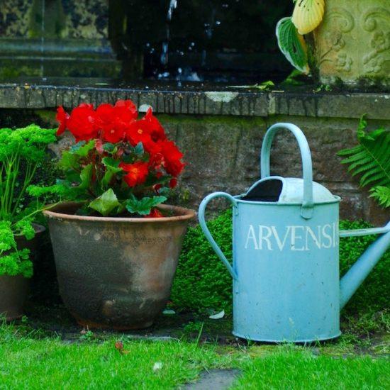 Shepherd House, Inveresk, Water Gems, pond cleaning and maintenance, Edinburgh