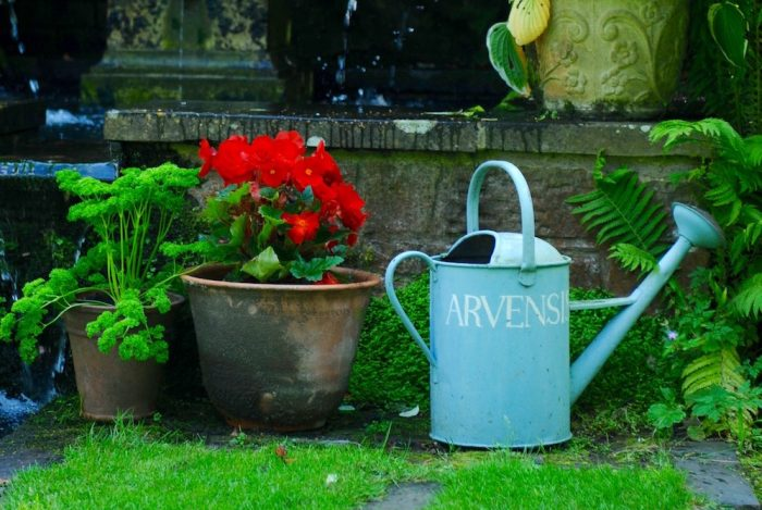 Shepherd House, Inveresk, Water Gems, pond cleaning and maintenance, Edinburgh