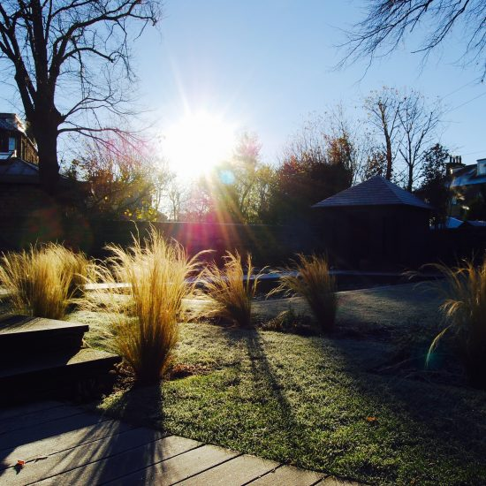 Stipa tenuissima in winter, in Edinburgh garden built by Water Gems, designed by Carolyn Grohmann