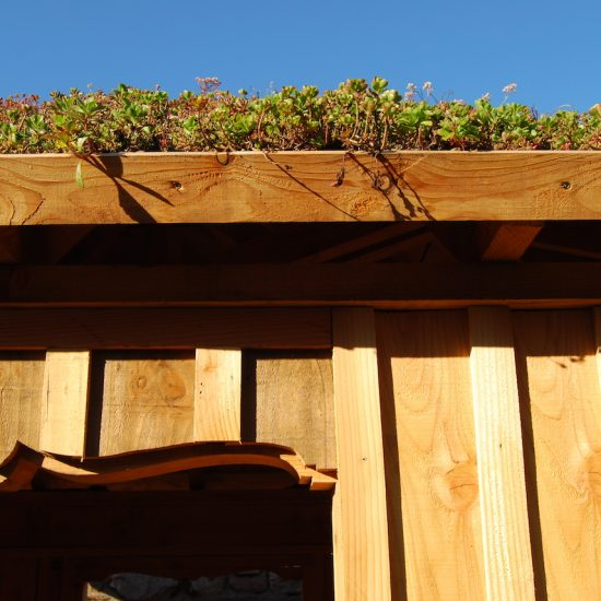 Aviemore garden, larch arbour, sedum roof, built by Water Gems, designed by Carolyn Grohmann