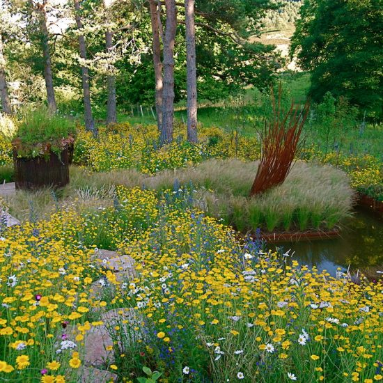 2010 Show Garden Gardening Scotland, rebar sculpture, rehoused in Aviemore garden, designed and built by Water Gems, planting by Carolyn Grohmann
