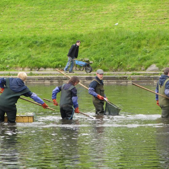 Water Gems back doing maintenance at Inverleith Park Pond