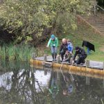 Froggy Pond Makeover by Water Gems Edinburgh