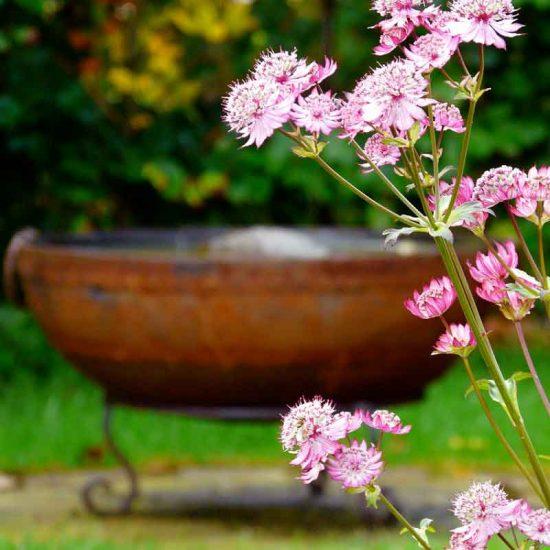 Kadai water bowl, Culross garden built by Water Gems, designed by Carolyn Grohmann