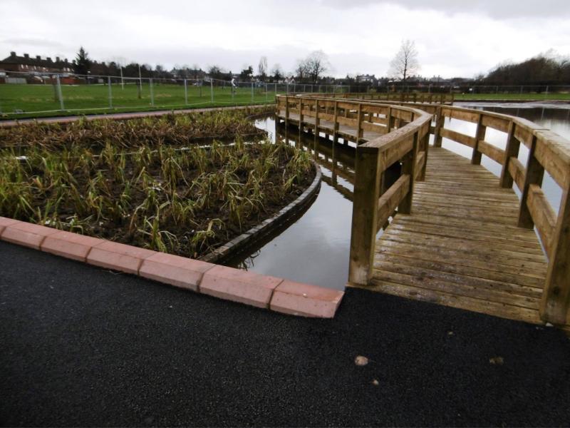 Boardwalk with wetland planting