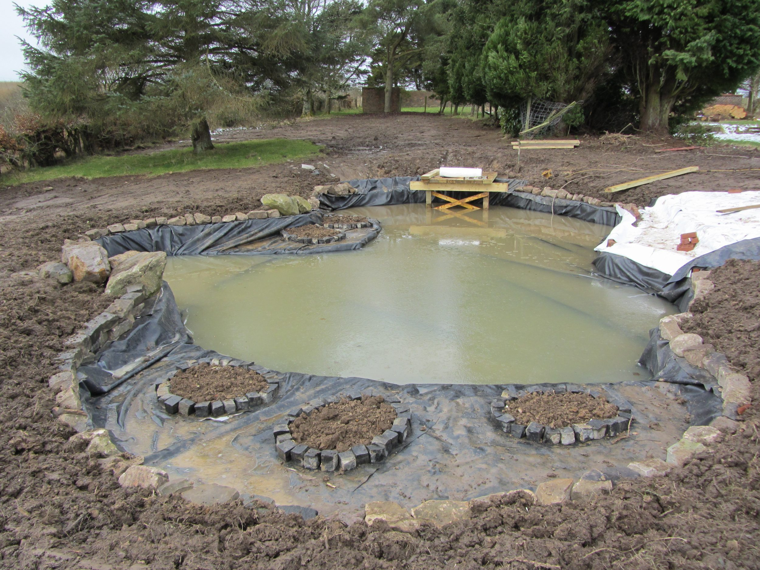 Pond tips building ponds water gems for Diy pond liner ideas